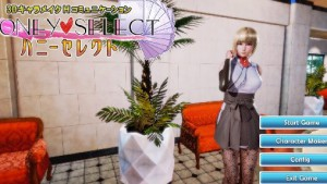 Room Scale Porn - How to set up Honey Select! illusion.jp vr porn blog virtual reality